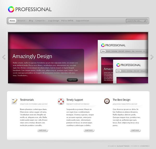 TheProfessional v1.7 Update – July 2010 ElegantThemes Premium WordPress Theme