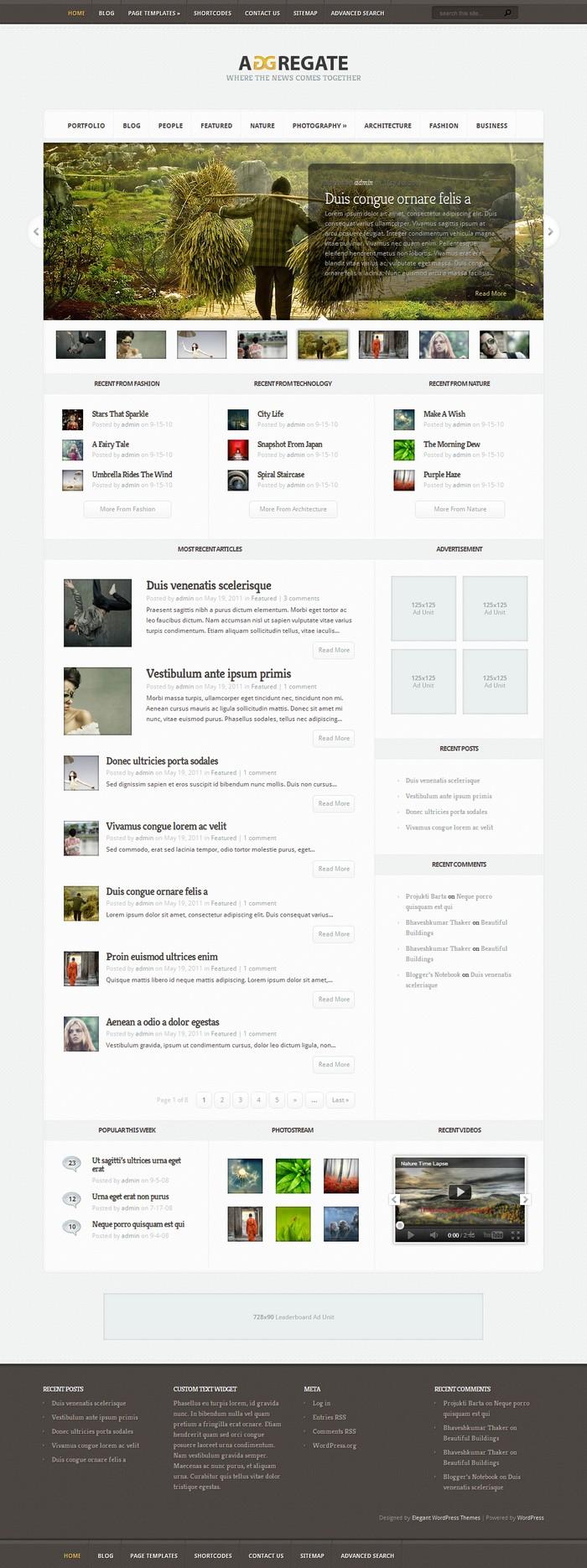 Aggregate v1.7 Photography WordPress Theme by ElegantThemes