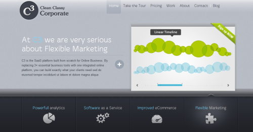 Clean Classy Corporate (C3) Developer Theme v1.0.18 by ThemeFuse