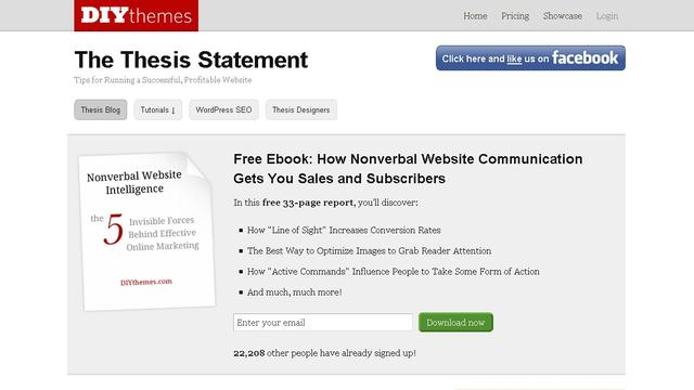Thesis Theme Statement v1.8.2 by DIYthemes