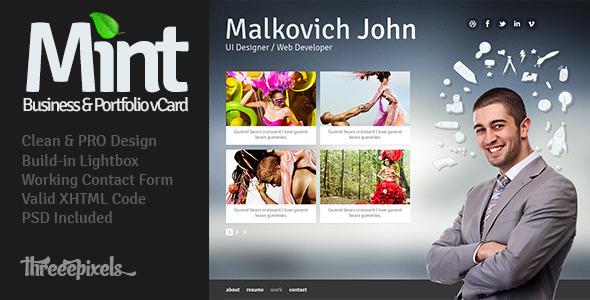 ThemeForest Mint – Virtual Business Card Template 2012