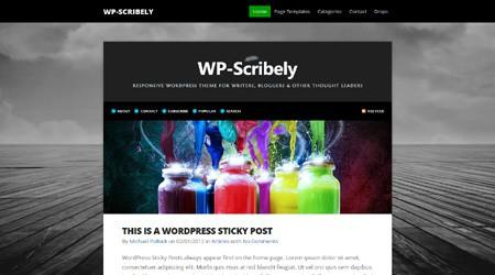 SoloStream – WP-Scribely Premium WordPress Theme
