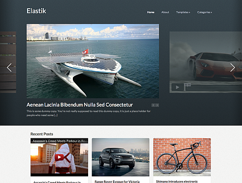 WPZoom – Elastik Theme for WordPress
