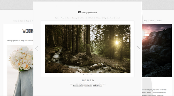 OrganicThemes – Photographer Theme v.2.0.9