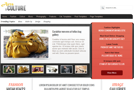 Gabfire Arts and Culture v1.4 Theme for WordPress