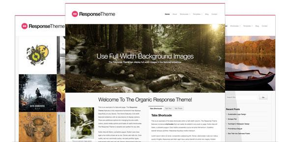 Organicthemes – Respoonse Theme for WordPress Theme