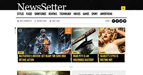 News Setter v1.0.1 – Magazine WordPress Theme