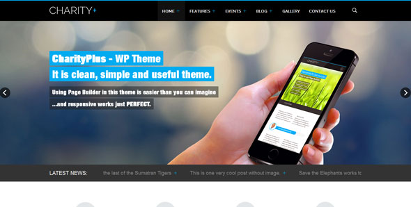 CharityPlus — Themeskingdom WordPress Template