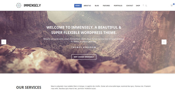 Immensely — Themeskingdom Responsive Multi-Purpose Theme