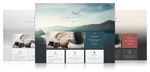 Organic v1.0 — Yootheme WordPress Theme