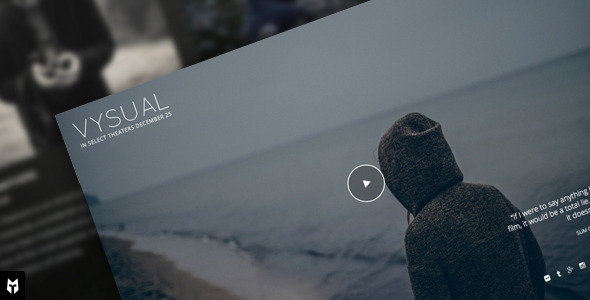 VYSUAL — Responsive Film Campaign WP Theme