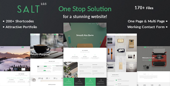 Salt v1.0.5 — Multi-purpose HTML5 Template