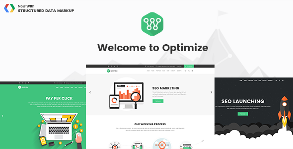 Optimize v1.8 — SEO, Digital Marketing, Social Media Theme
