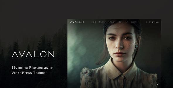 Avalon v1.0.9.9 — Photography and Portfolio WordPress Theme for Photographers