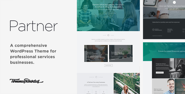 Partner v1.0.5 — Accounting and Law Responsive WordPress Theme