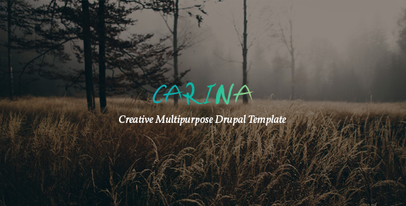 Carina v1.0 — Creative Multipurpose Drupal 8 Template