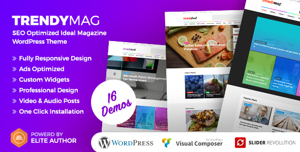 TrendyMag v1.1 — WordPress News Magazine & Blog Theme
