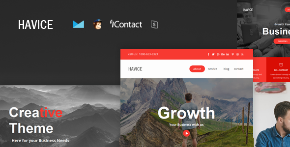 Havice Mail v1.0 — Responsive E-mail Template + Online Access