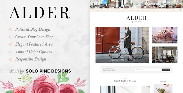 Alder v1.1 — A Responsive WordPress Blog Theme