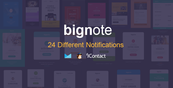 Bignote — 24 Unique Responsive Email Notification set + Online Access