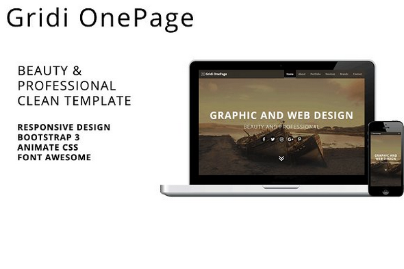 Gridi OnePage v1.0.0 — Beauty & Professional Clean Template