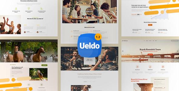 Ueldo v1.2.7 — Responsive Multi-Purpose WordPress theme