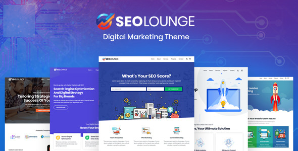 SEOLounge v1.0.3 — SEO Agency WordPress Theme