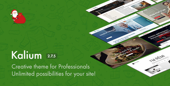 Kalium v2.7.5 — Creative Theme for Professionals