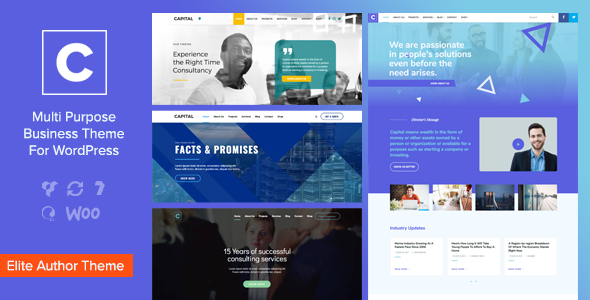 Capital v1.5.1 — Multi Purpose Business WordPress Theme