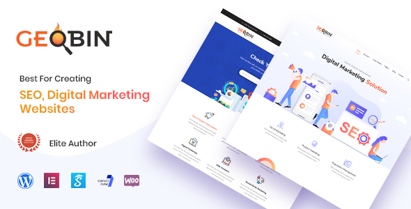 GeoBin v1.9 — Digital Marketing Agency Theme