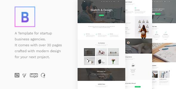 BoTheme v1.1 — Startup Business WordPress Theme