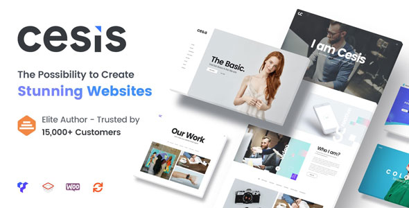 Cesis v1.1 — Ultimate Multi-Purpose PSD Template