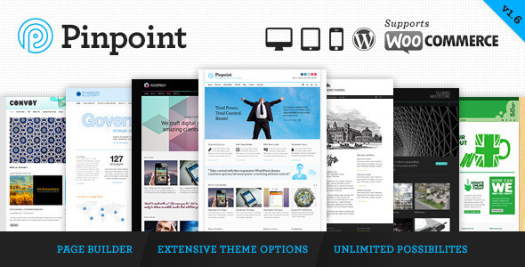 Pinpoint v1.7.30 — Responsive Multi-Purpose WP Theme