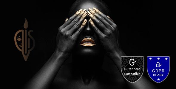 FullScreen Artist v1.5 — Photography Theme