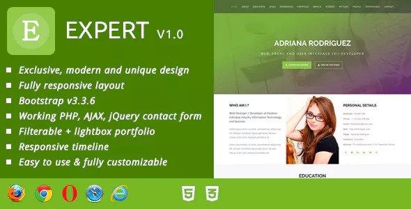 Expert CV / Resume & Portfolio