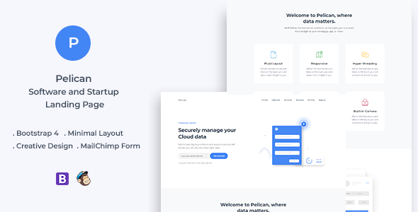 Pelican v1.0 — Startup and Software Landing Page
