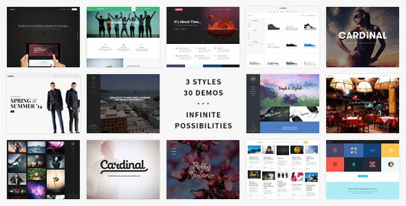 Cardinal v2.6.32 — WordPress Theme