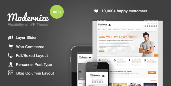 Modernize v3.3.1 — Flexibility of WordPress